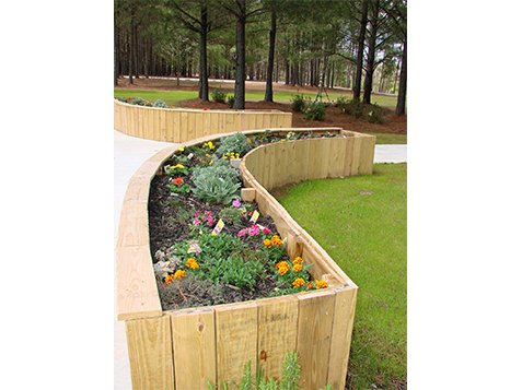 Sensory Park - Garden